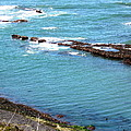Oregon Coast by Linda Hutchins