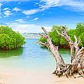 Panorama Island by MotHaiBaPhoto Prints