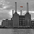 Pink Floyd Pig At Battersea by Dawn OConnor
