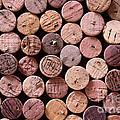Red Wine Corks by Frank Tschakert