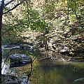Richland Creek by David Troxel