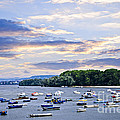 River Boats On Danube by Elena Elisseeva