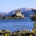 Scottish Castle by Luisa Azzolini