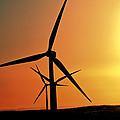 Sun Glare Upon Alberta Windfarm by Mark Duffy