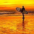 Surfing Sensations by Donna Pagakis