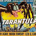 Tarantula, John Agar, Mara Corday, 1955 by Everett