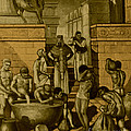 The Art Of Brewing, Babylon by Science Source