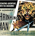 The Incredible Shrinking Man, 1957 by Everett