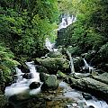 Torc Waterfall, Killarney, Co Kerry by The Irish Image Collection