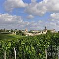 Village And Vineyard Of Saint-emilion. Gironde. France by Bernard Jaubert