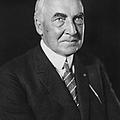 Warren Harding (1865-1923) by Granger