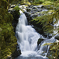 Waterfalls Of Sol Duc River, Olympic by Konrad Wothe