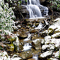Winter Waterfall Back Fork Of Elk River by Thomas R Fletcher