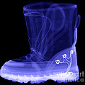 X-ray Of A Childs Light-up Boot by Ted Kinsman