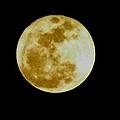 2011 Full Moon by Maria Urso