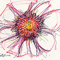 2012 Drawing #10 by Lynne Taetzsch