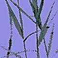 Water Reed Digital Art by David Pyatt