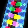 Dna Molecule by Pasieka