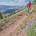 Mountain Bike by Elijah Weber