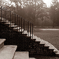 28 Up And Down Steps by Jan W Faul