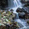 Waterfall by Odon Czintos