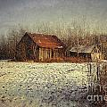 Abandoned Barn With Snow Falling by Sandra Cunningham