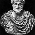 Aristotle (384-322 B.c.) by Granger