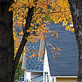 Autumn In America by Christine Belt