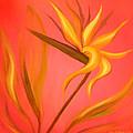 Bird Of Paradise by Gina De Gorna