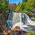Blackwater Falls by Mary Almond