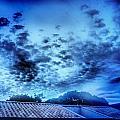 Blue by Beto Machado