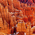 Bryce Canyon by Brian Jannsen