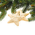 Christmas Cookies Decorated With Real Tree Branches by U Schade