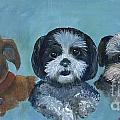 3 Dog Night by Ruth Ann Murdock