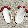 Footprints by Mats Silvan
