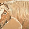 Halfie by Stephanie L Carr