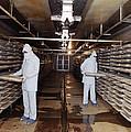 Microbe Fermentation Unit by Volker Steger