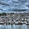 Milford Haven Marina by Steve Purnell