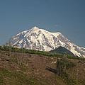 Mt Rainier by Michael Merry