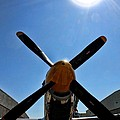 North American P-51 Mustang  by Tommy Anderson