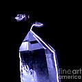 Quartz Crystal & Sparks by Ted Kinsman