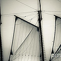 3 Sails In Monotone Of An Old Sailboat by Emilio Lovisa