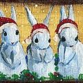 3 Shy Santa Bunnies by Sylvia Pimental