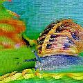 Snail On Aloe Vera by Werner Lehmann