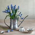 Still Life With Grape Hyacinths by Nailia Schwarz