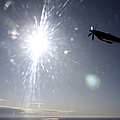 Supermarine Spitfire Mk. Xviii Fighter by Daniel Karlsson