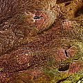 Uterine Cancer by Steve Gschmeissner