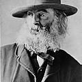 Walt Whitman, American Poet by Photo Researchers
