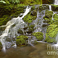 Waterfall by Ted Kinsman