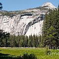 Yosemite by Carol Ailles